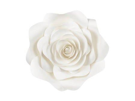Papierowe kwiaty - jasny kremowy - mix